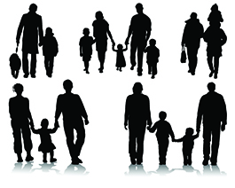 surplus income bankruptcy and family