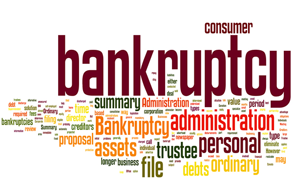 Image result for Types of bankruptcy