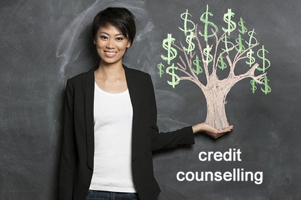 credit counselling sessions